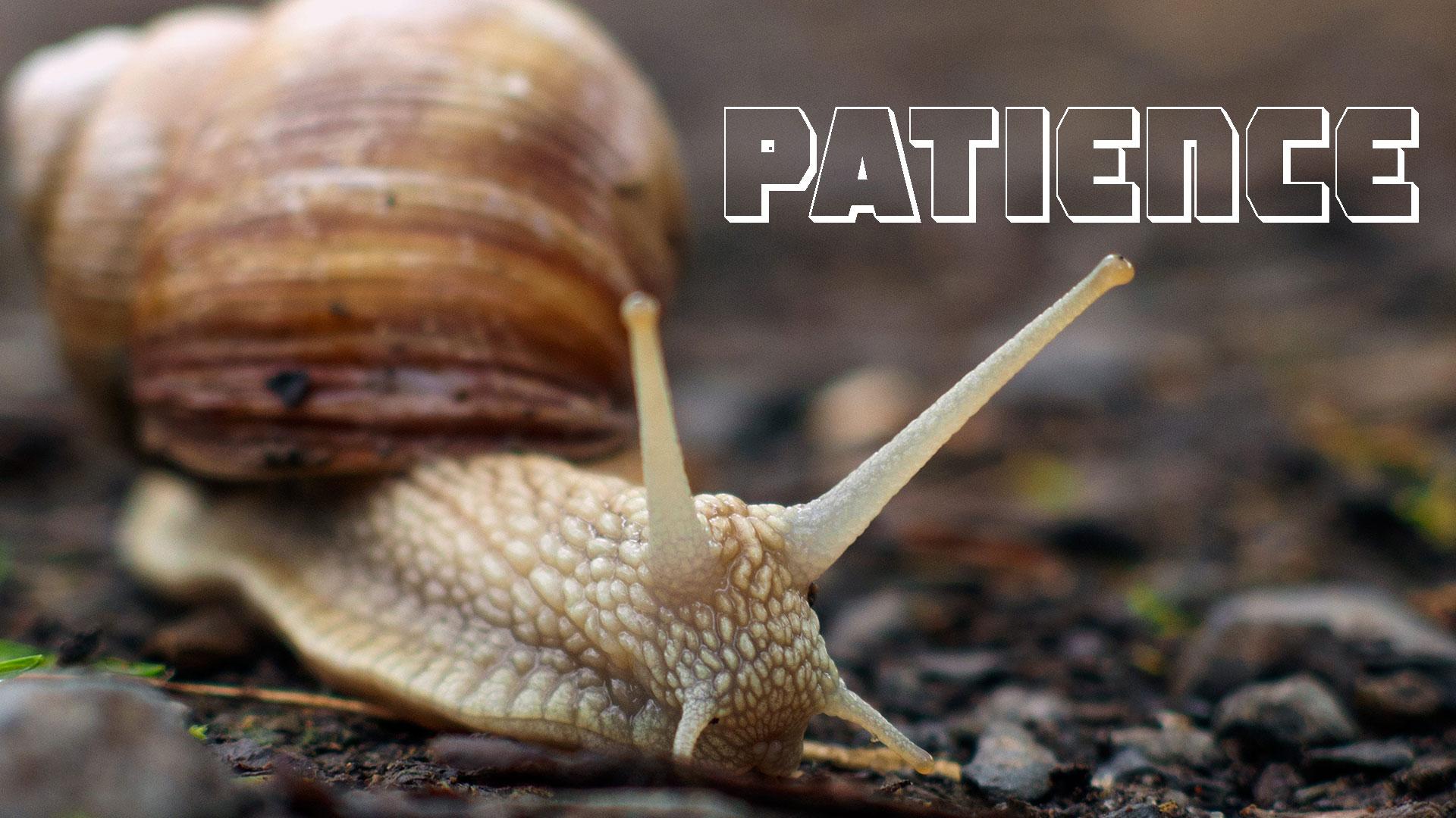 Ep. 122 - Patience.jpg