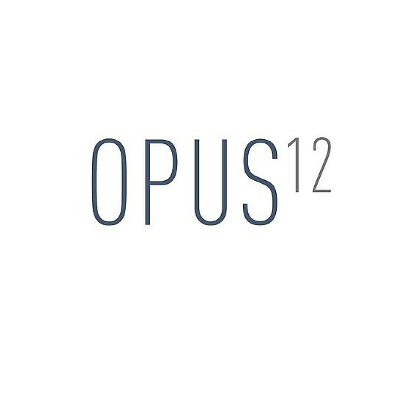 OPUS12: Recycling carbon dioxide into fuels.