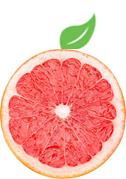 gridfruit_logo_june18.png