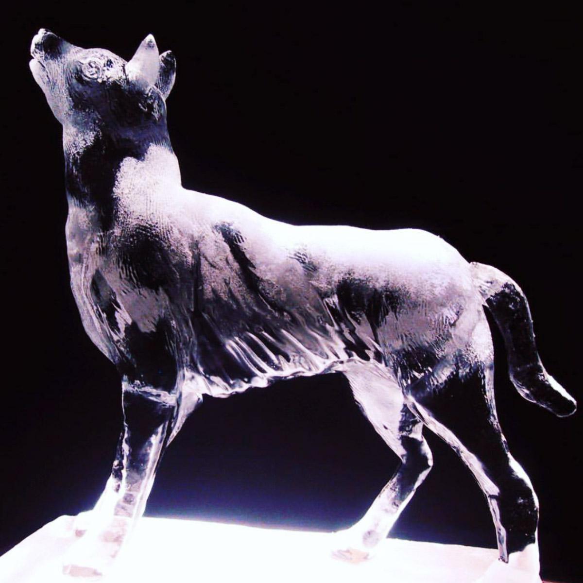 "<strong>sculptures</strong><a href=""/portfolio-celebrations-sculptures"">view »<a>"