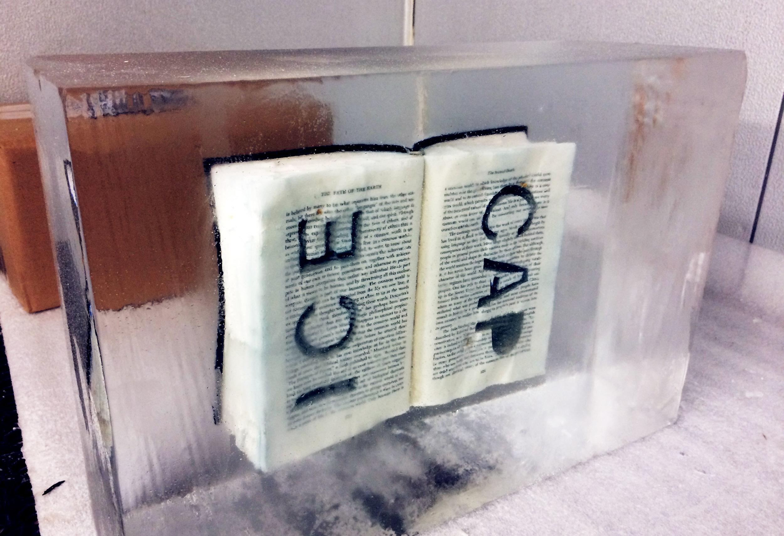 book frozen for doug beube*.jpg