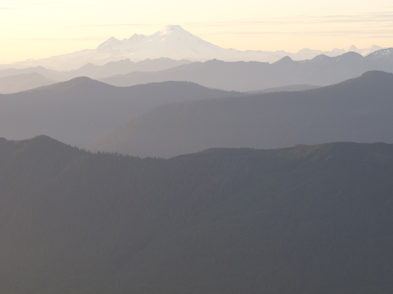 bondi_landscape_10.jpg