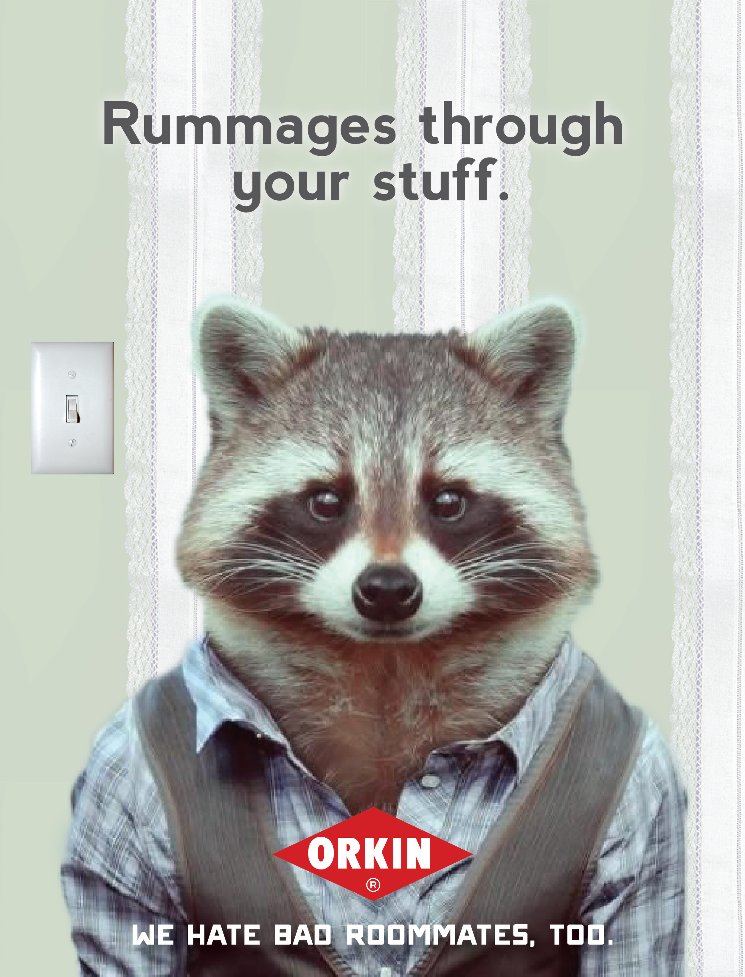 Ads_Mag_Racoon.png