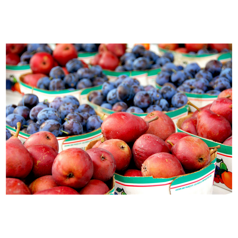 Farmers market pic 4.png