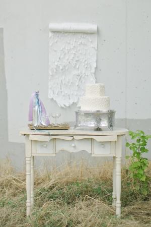 photo shoot cake.jpg