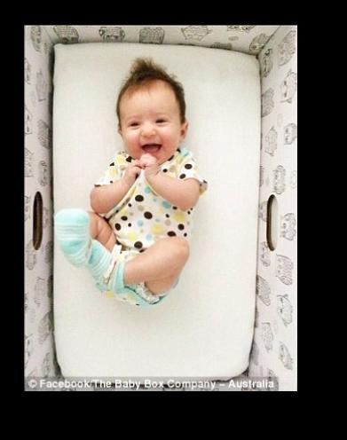 Baby-Box-Sample-1.jpg
