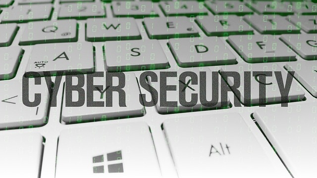 cyber-security-1914950_640 pixabay.jpg