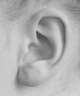 black and white ear.jpg