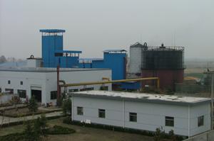 5.5兆瓦级生物质气化蒸汽联合循环发电厂