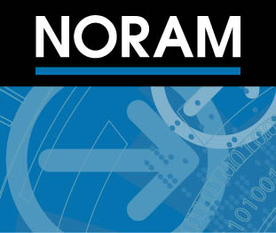 NORAM Engineering and Constructors Ltd.