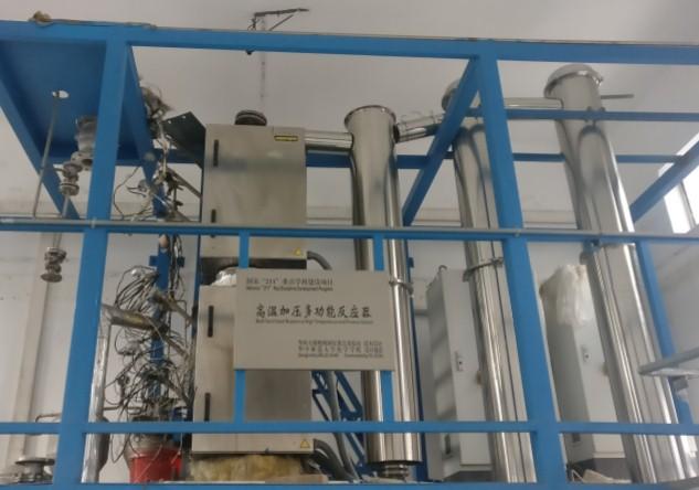 High temperature high pressure reactor