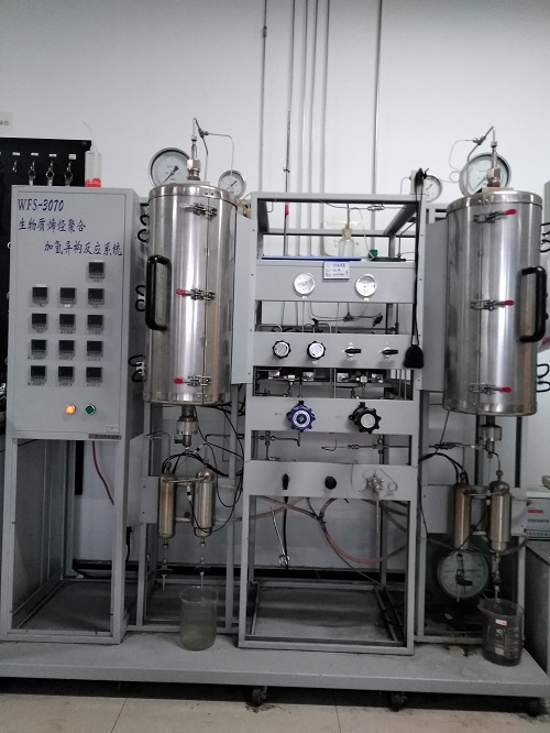 Biomass olefin polymerization hydroisomerization reaction system