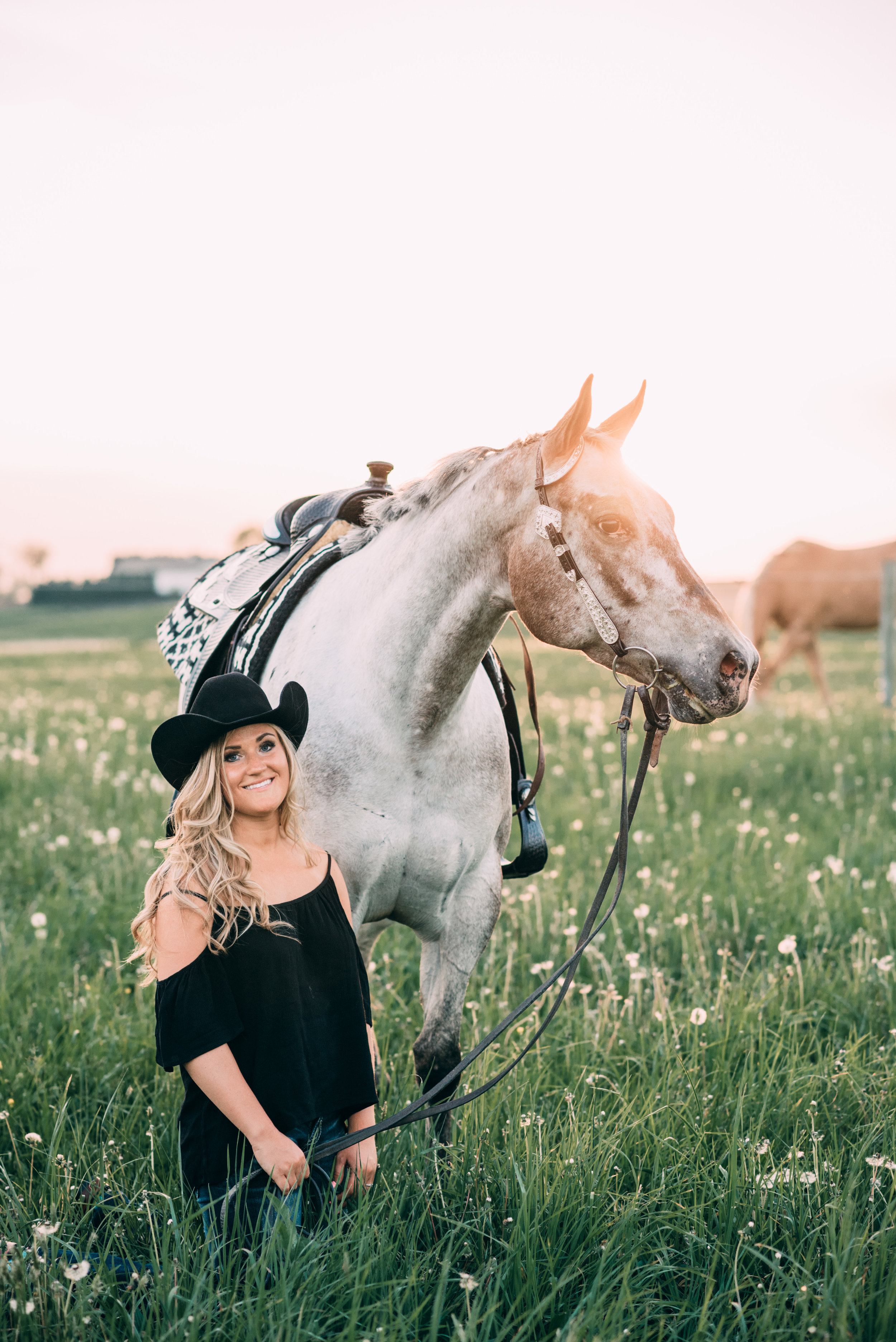 maryland horse and rider portrait sessions
