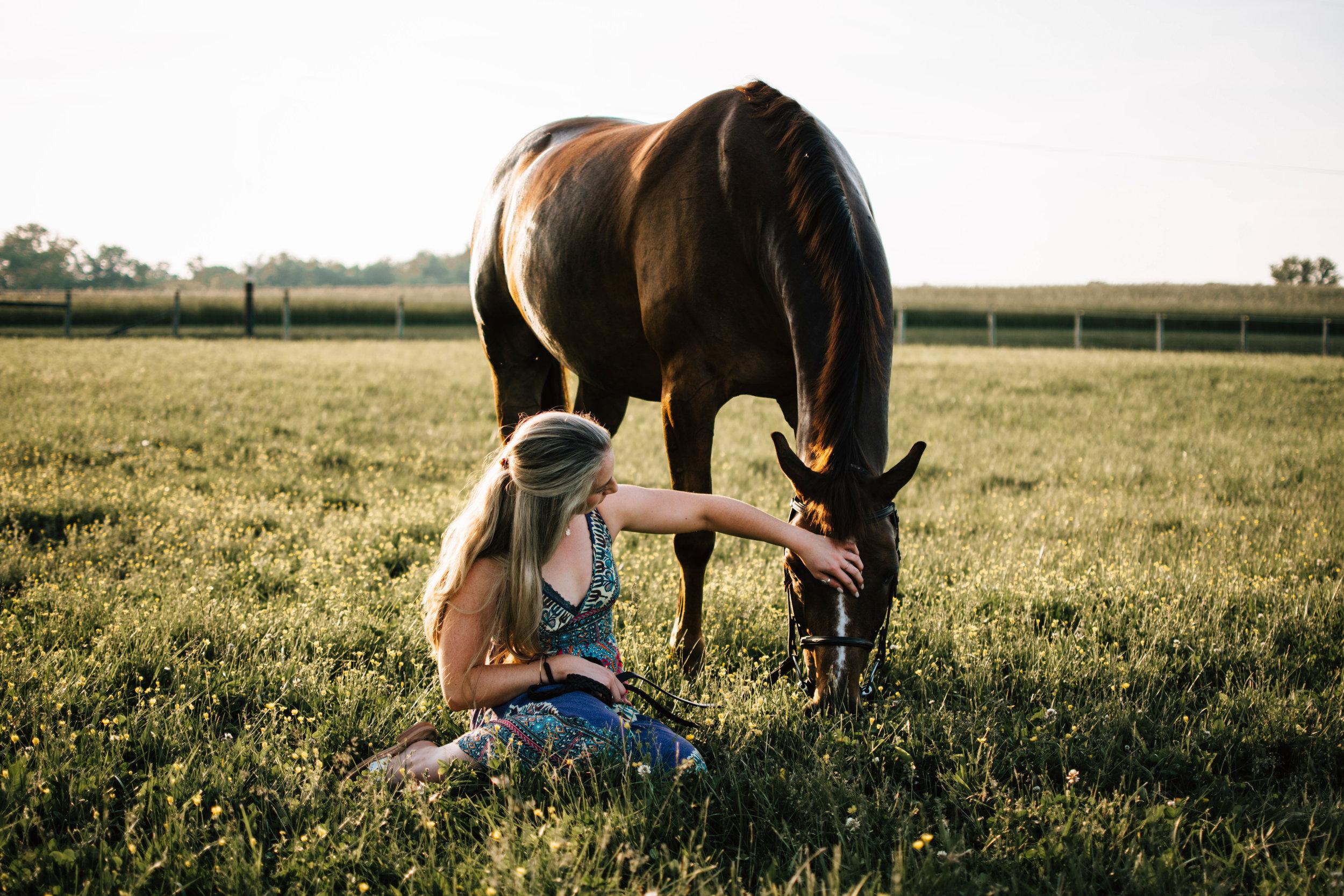 maryland horse photographer