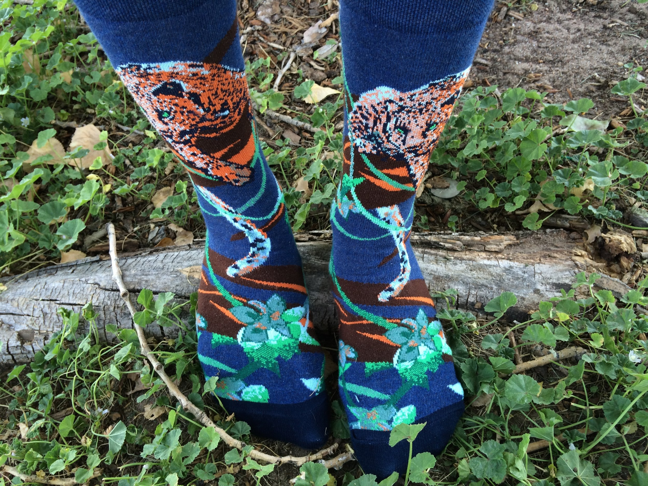 """Endangered Cats Jaguar Socks"" Style - Photo Credit: Jess Doutrich"