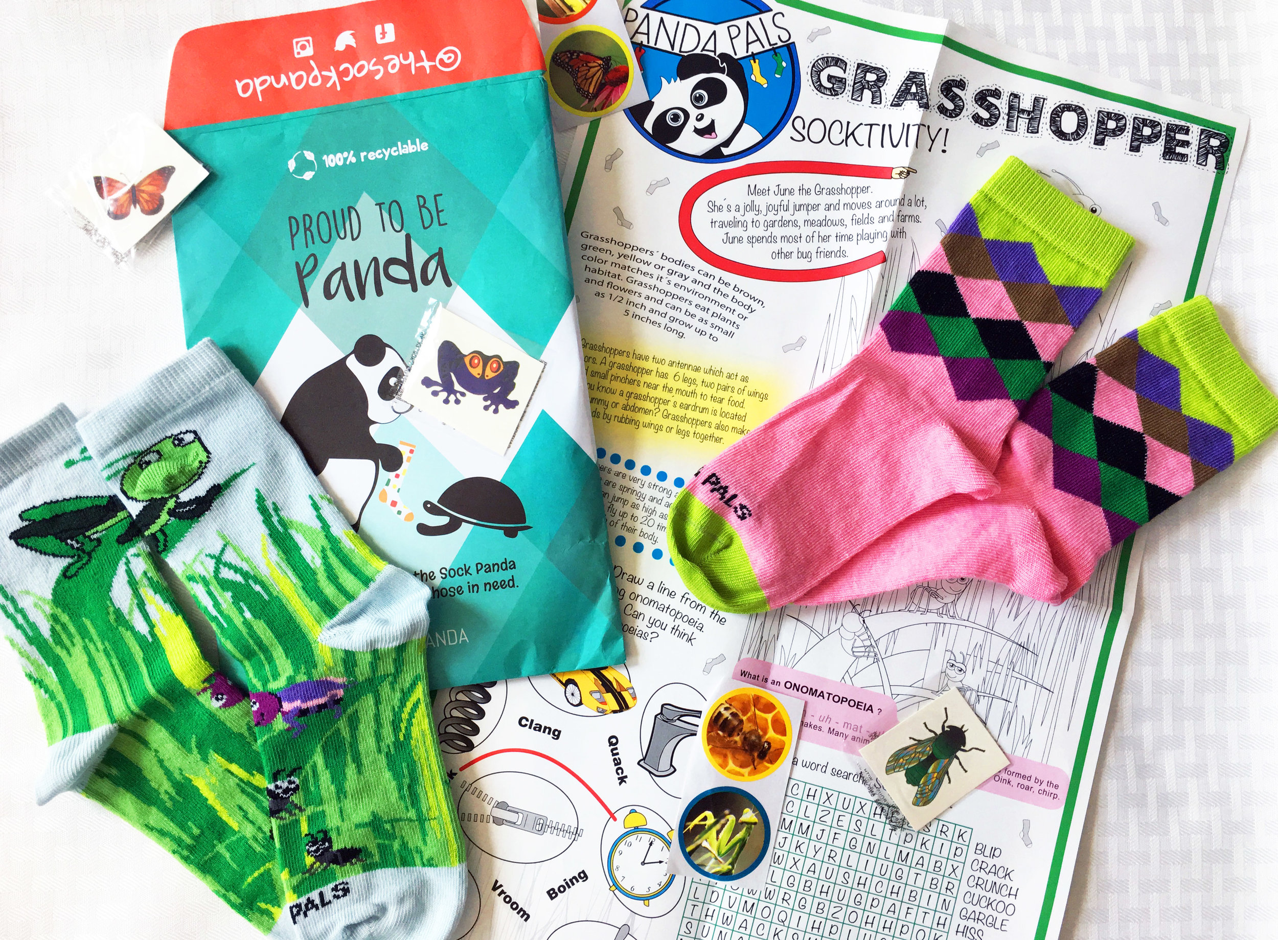 Sock Panda - Panda Pals (Play and Learn Socktivity)  featuring June the Grasshopper. Photo Credit: The Sock Review
