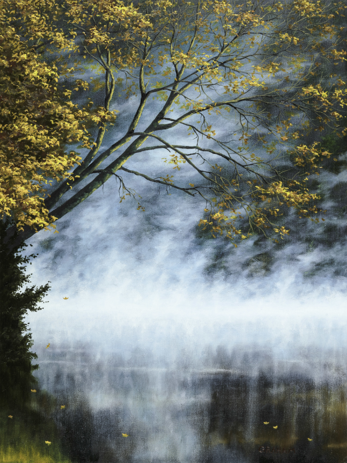 18x24-fogy-forest-small.jpg