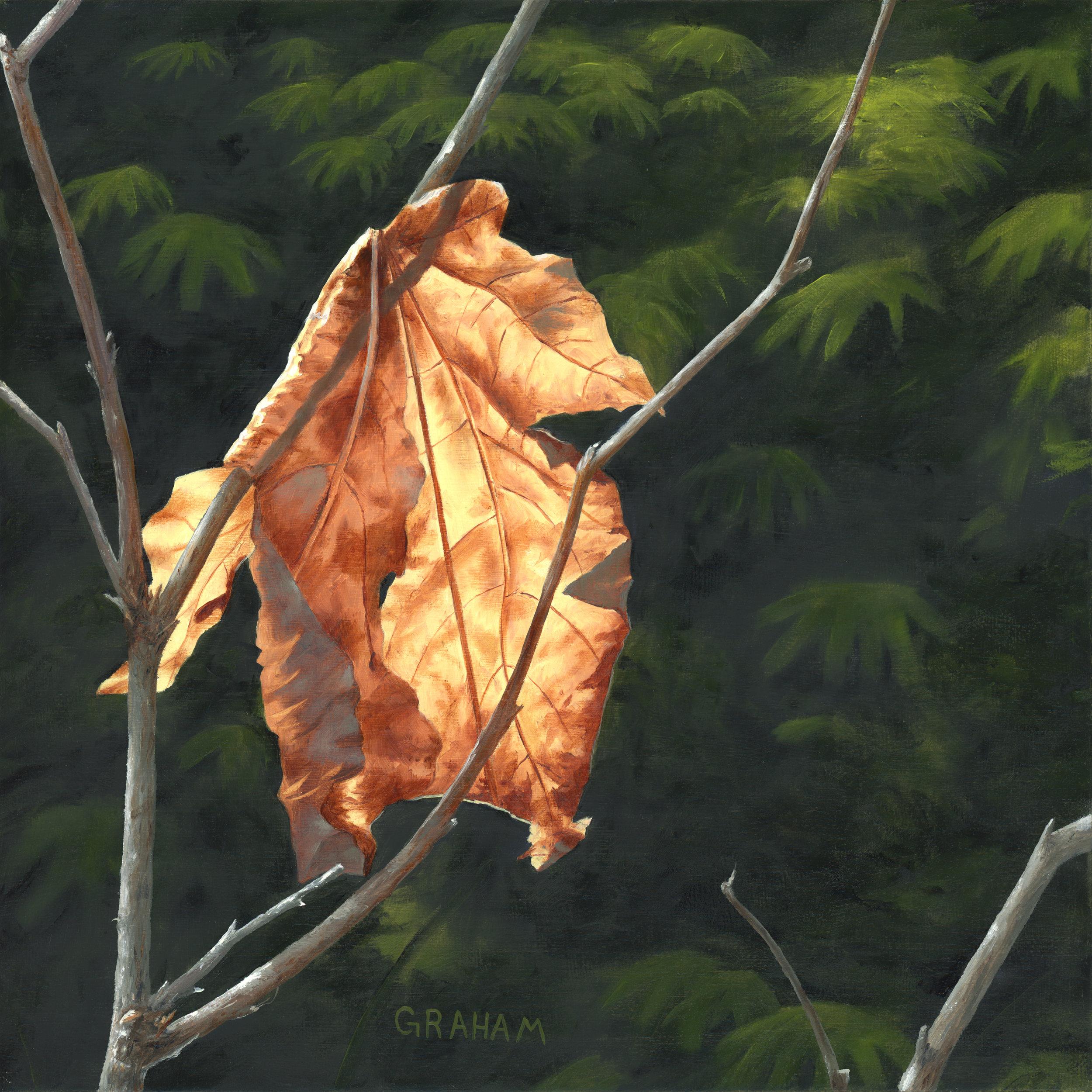 Autumn In August 1.jpg
