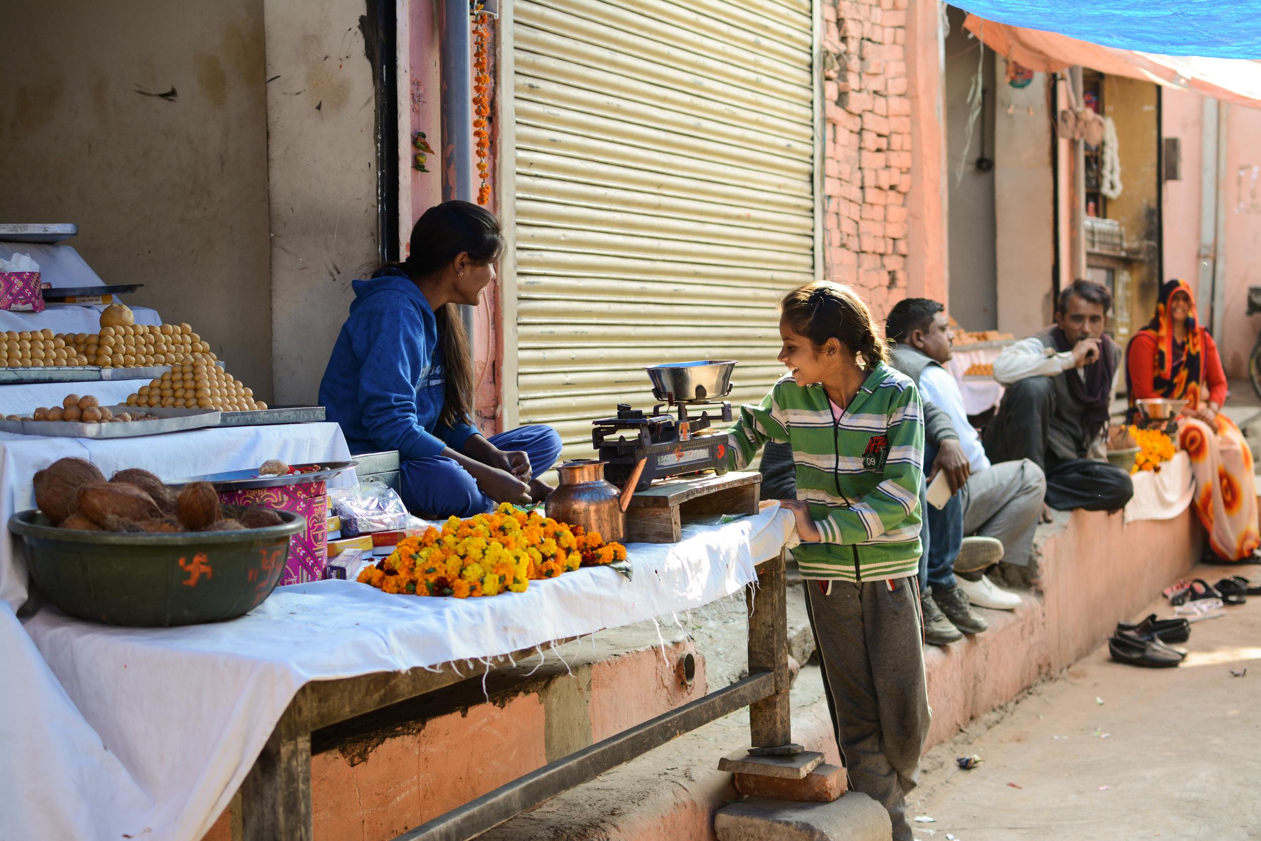 Jaipur, India  January 2016