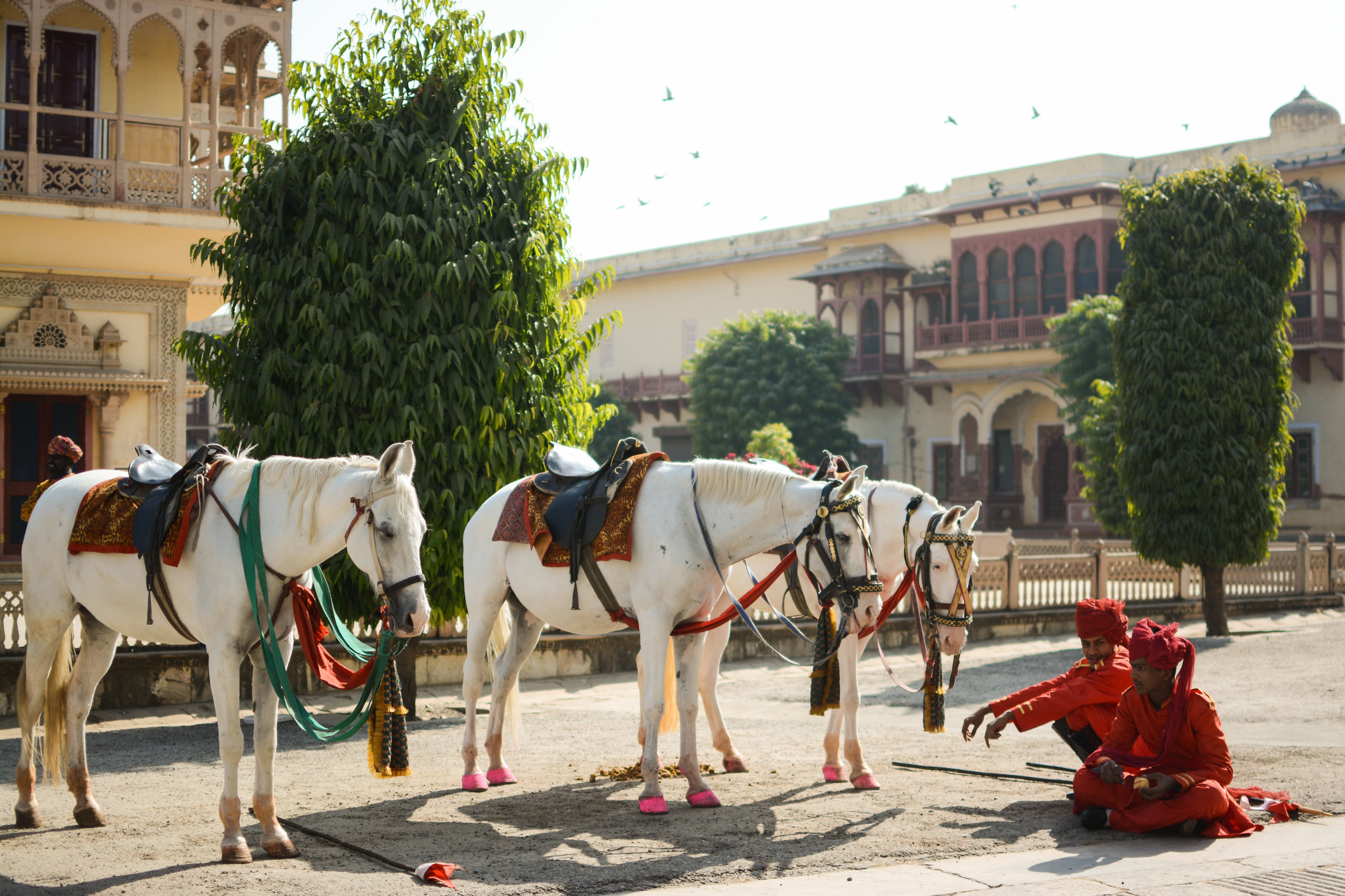 City Palace, Jaipur, India  January 2016