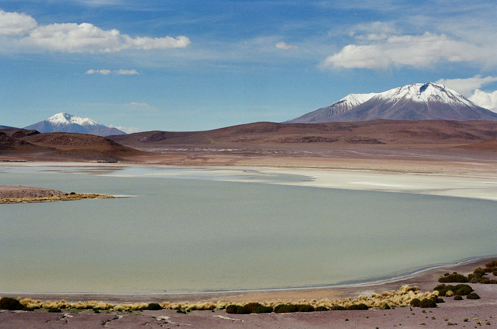 Laguna Honda, Bolivia  March 2018