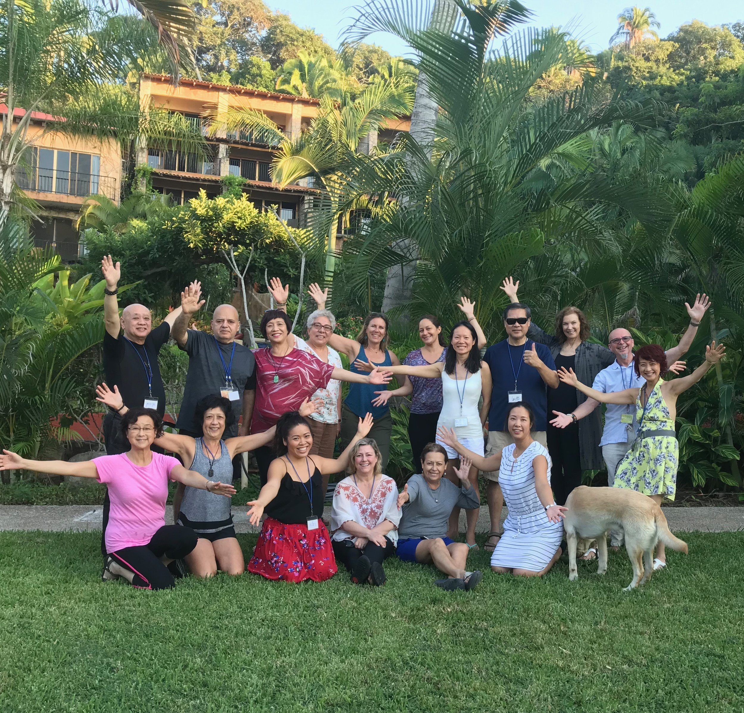 LEVEL 1  -  MICHAEL D'ALTONS 'BIO-INSPIRED'   AN INTRODUCTION WORKSHOP IN BIO ENERGY HEALING MEXICO CLASS