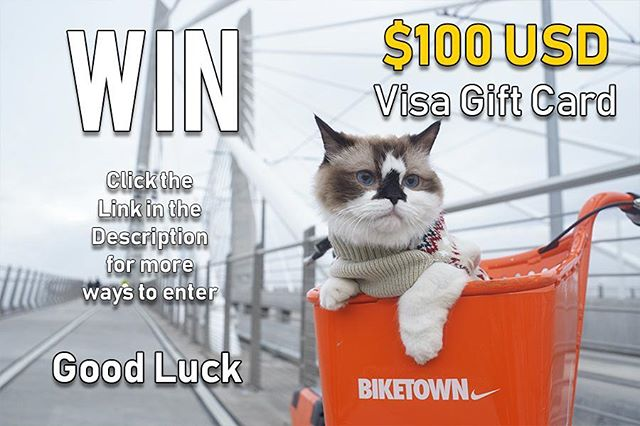 WIN a $100 USD Visa Gift Card~! Entry is easy Enter multiple times here    gleam.io/fb/vZGJ3