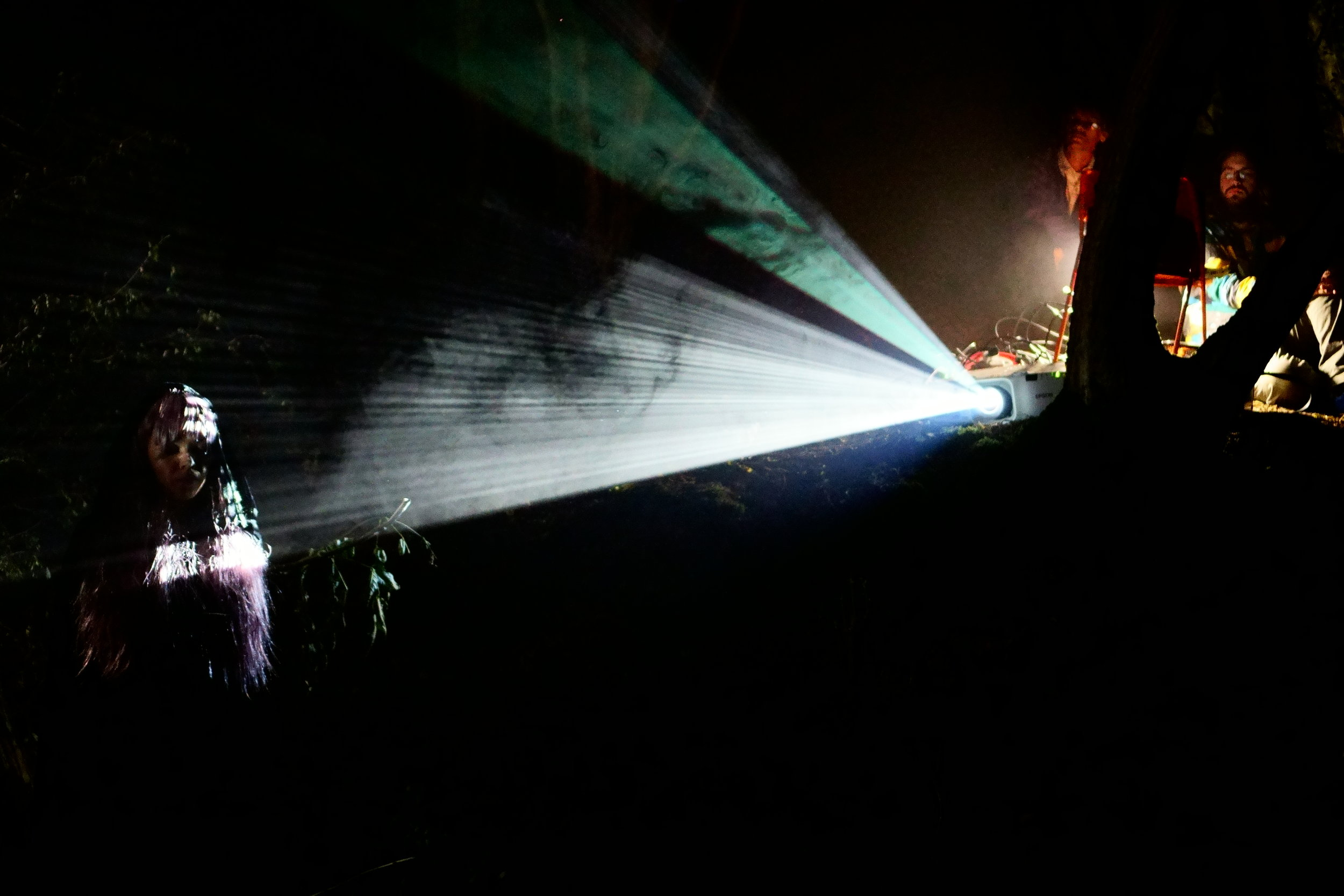 projection-mapping-forest
