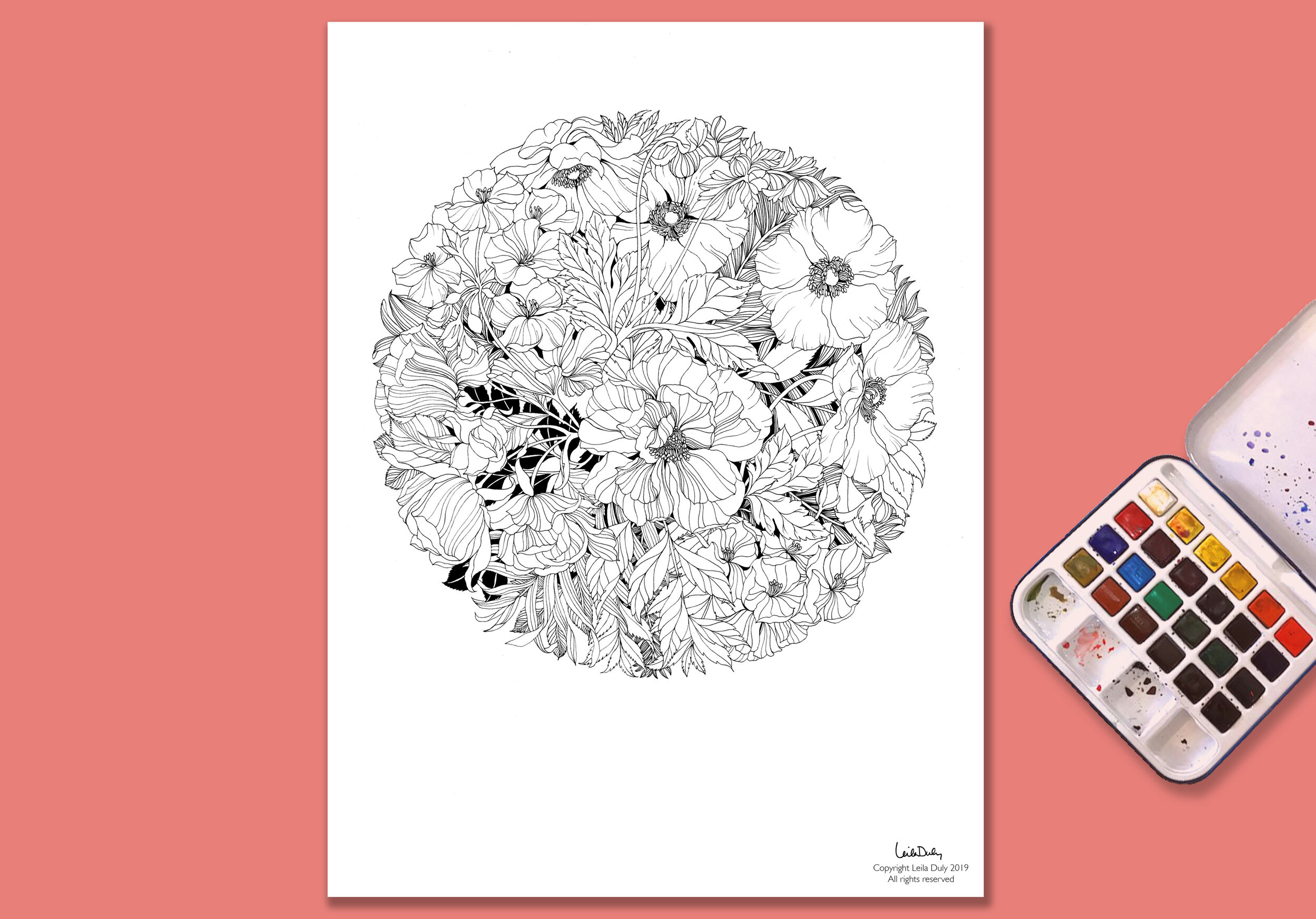 Geranium Anemone & Rose - -Drawing Download