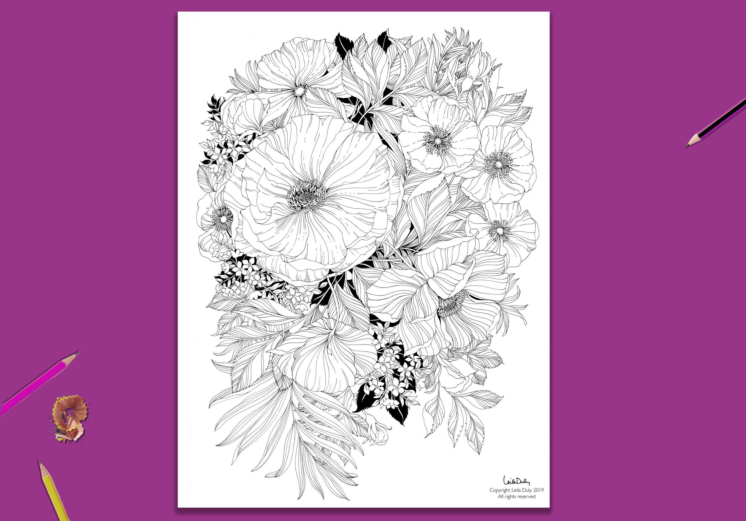 Wild Rose - - Drawing Download