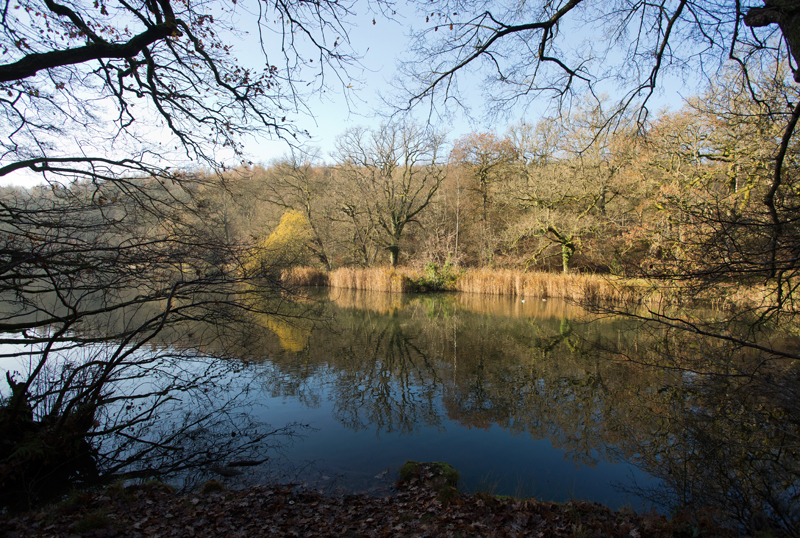 River of Wye,Forest of Dean