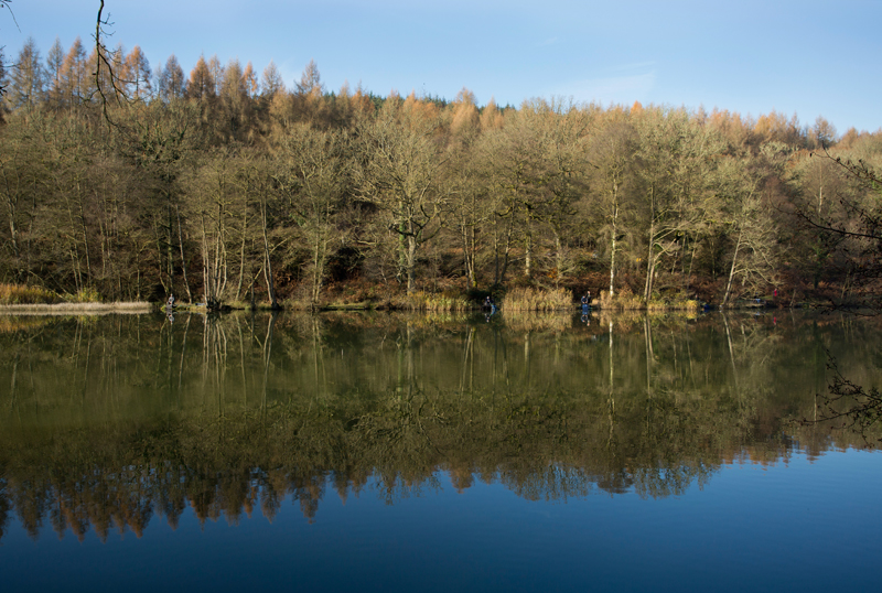 River Wye, Forest of Dean