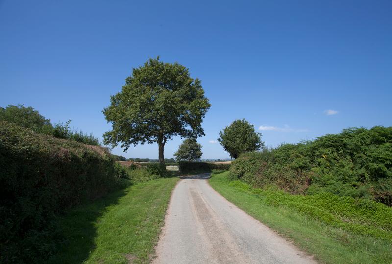 Country Lane, Pembridge, Hereforshire