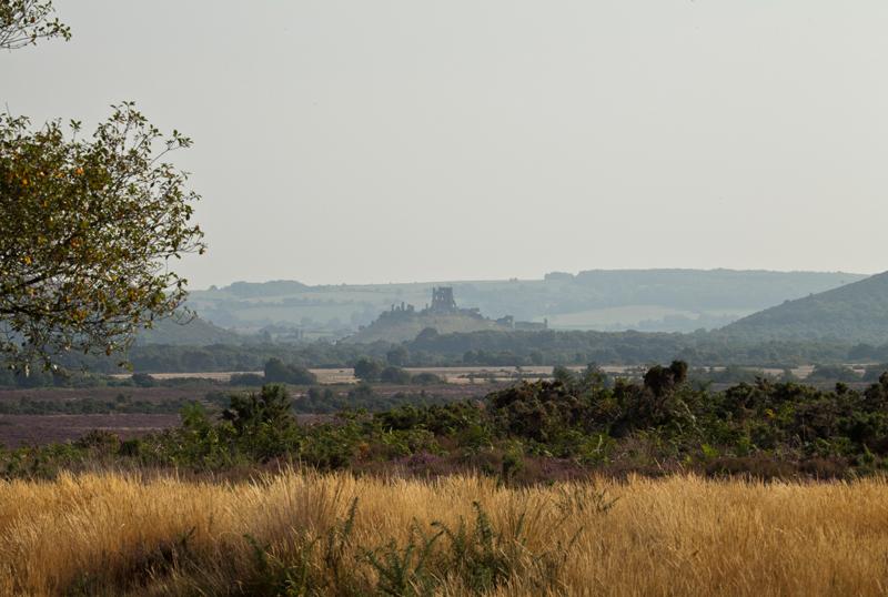 View of Corfe Castle, Dorset