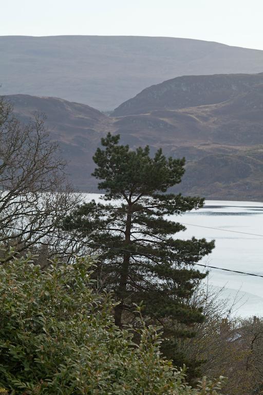 Scotland11.jpg
