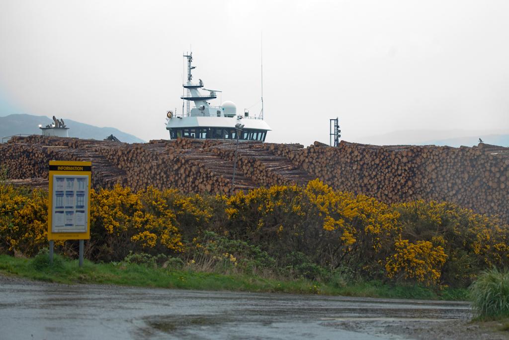 Scotland44.jpg