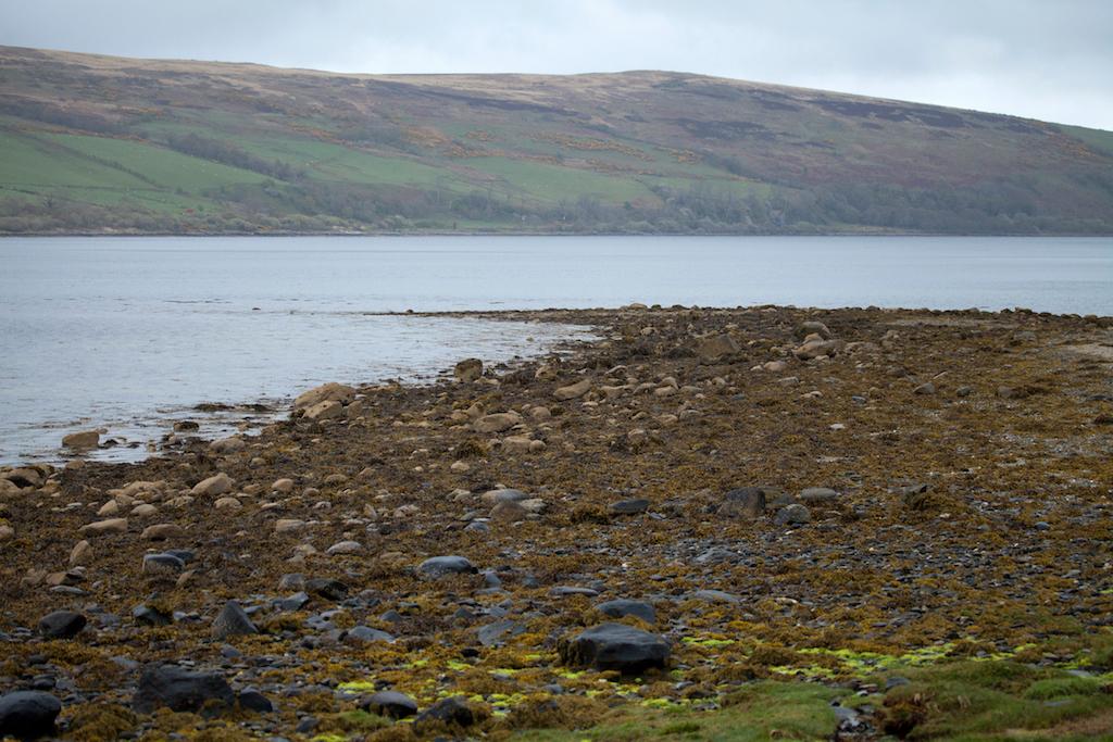 Scotland53.jpg