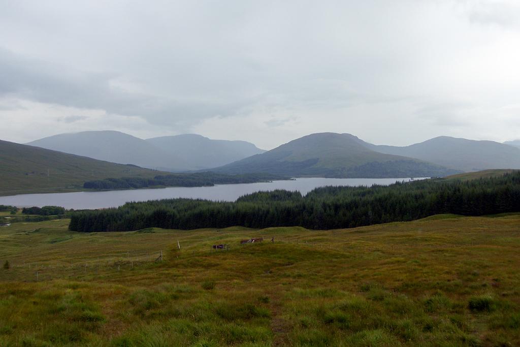 Scotland83.JPG