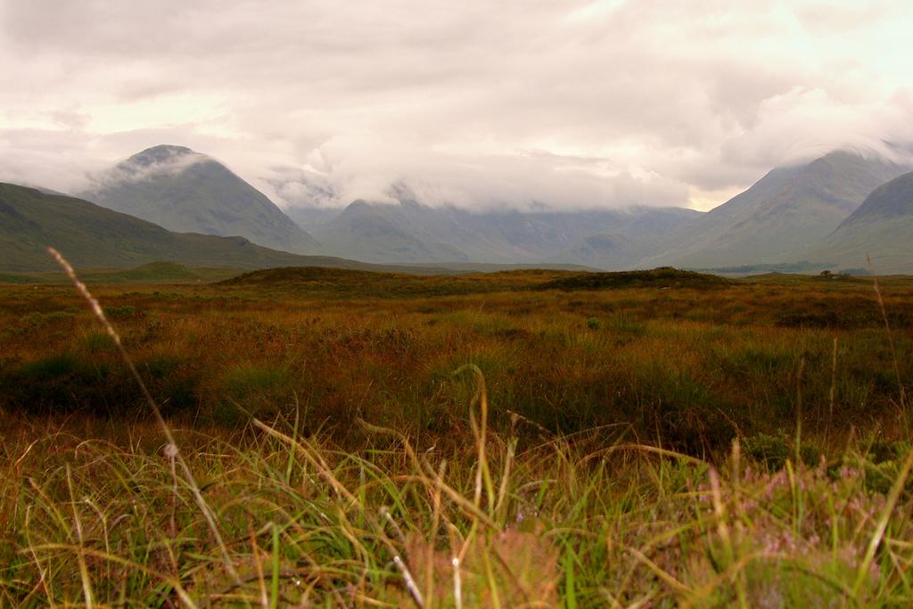 Scotland87.JPG