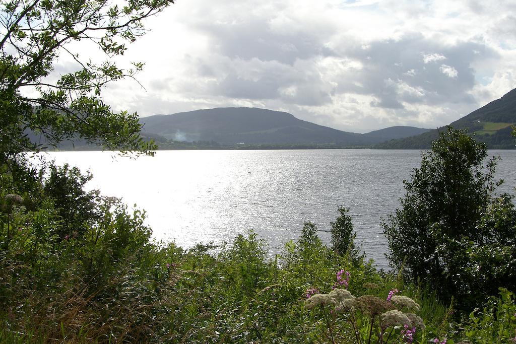 Scotland161.JPG