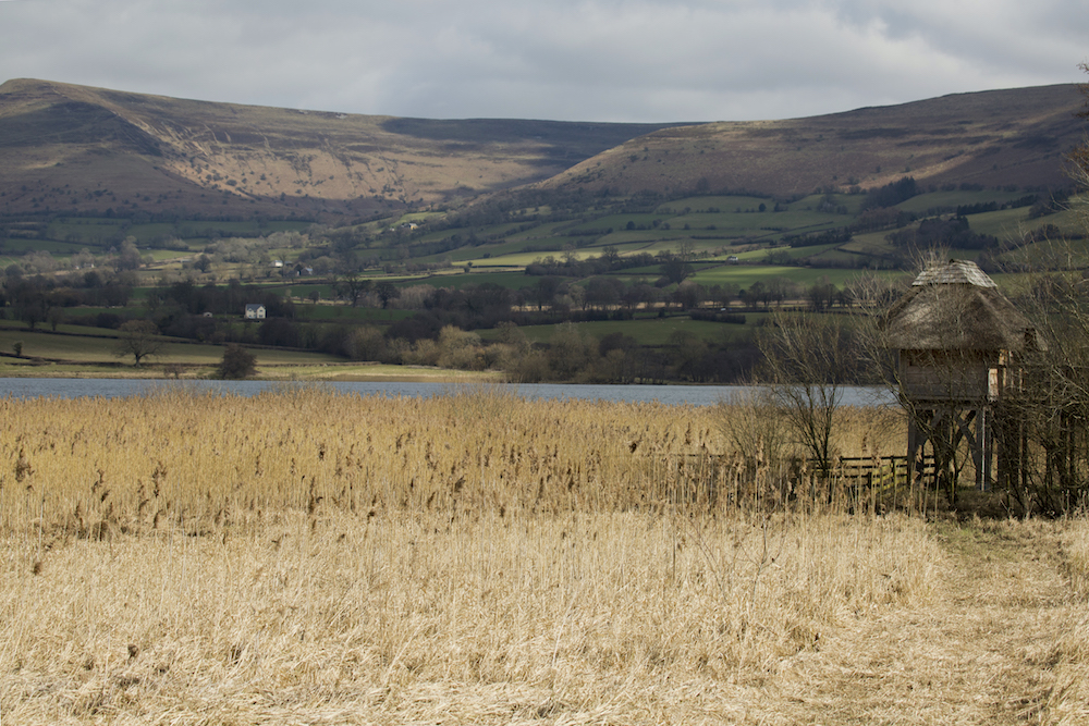 Wales10.jpg