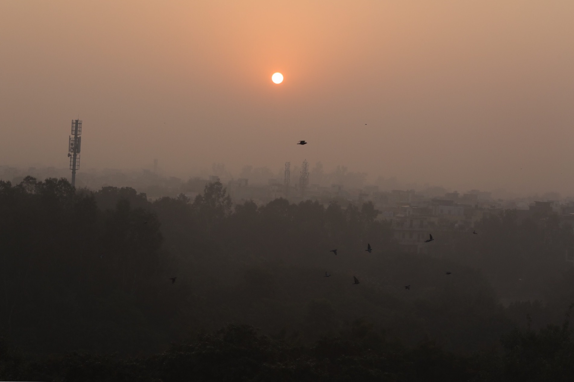 Delhi at 7am