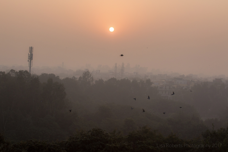 Delhi Sunrise, India