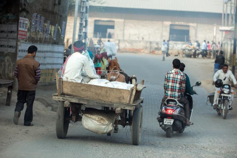 A working day, Agra, Uttar Pradesh, India