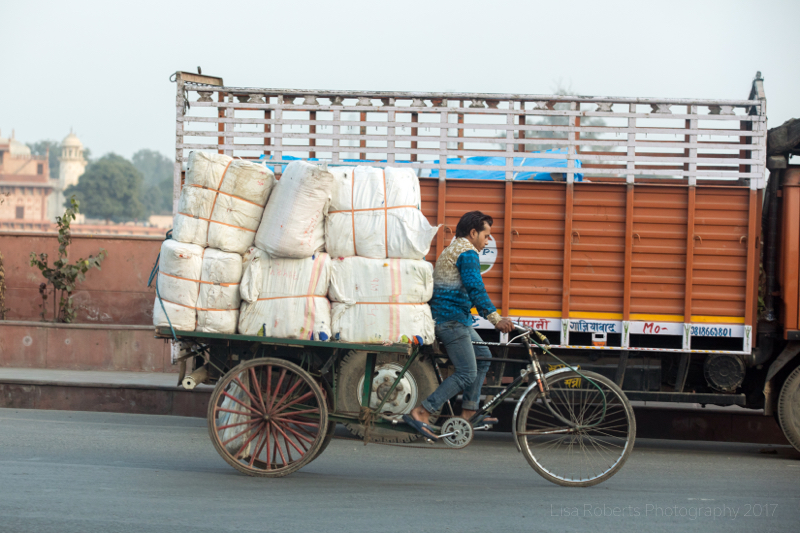 Pedalling hard, Agra, Uttar Pradesh, India