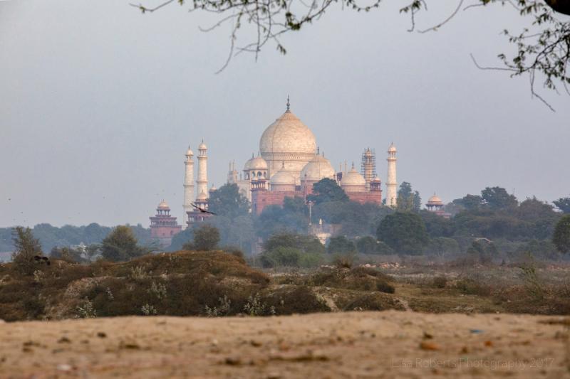 Taj Mahal from a distance, Agra, Uttar Pradesh, India