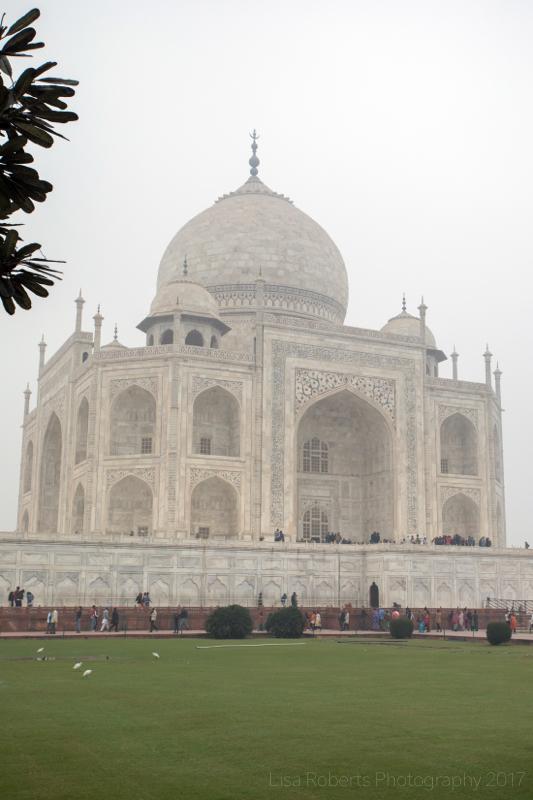 The Taj Mahal, South View, Agra, Uttar Pradesh, India