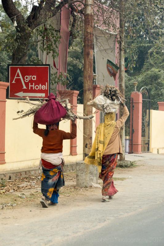 Balancing fire wood, Agra, Uttar Pradesh, India