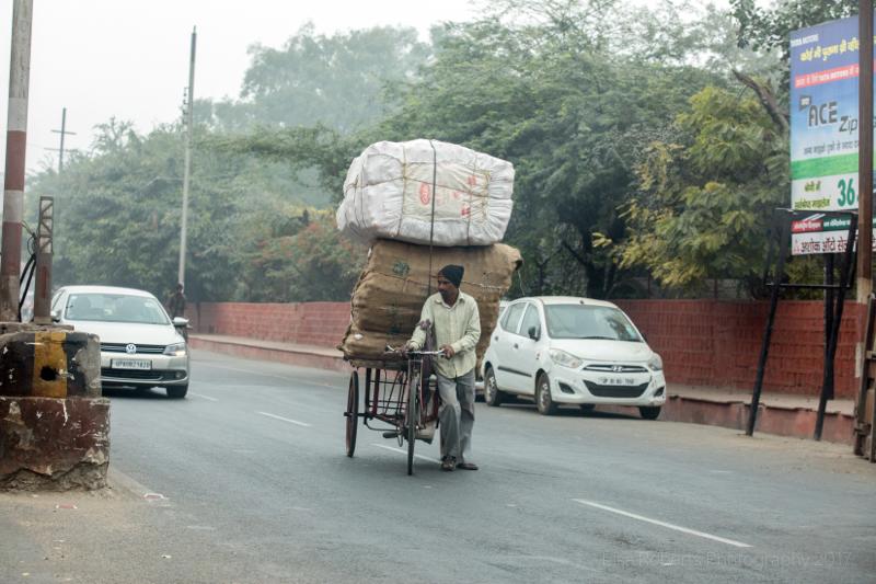 Pulling a heavy load, Agra, Uttar Pradesh, India