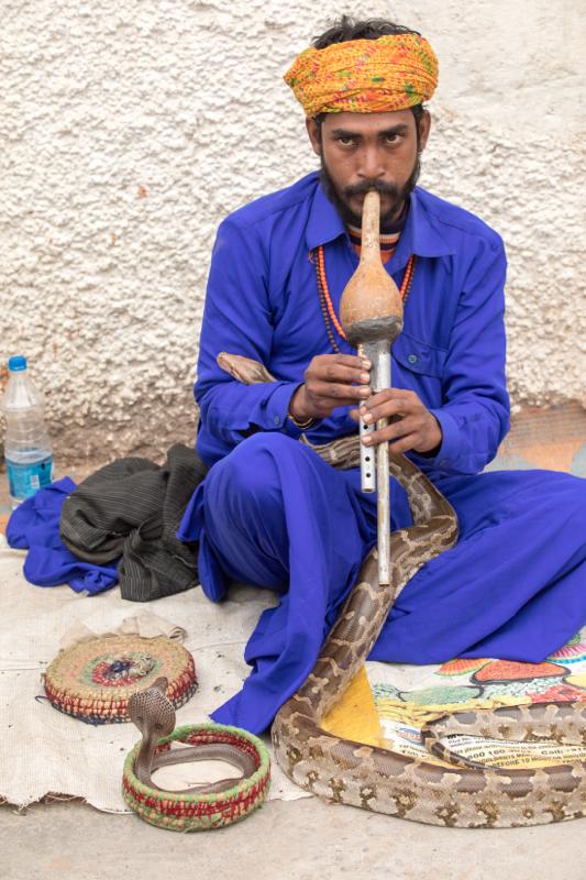 Snake charmer, Agra, Uttar Pradesh, India